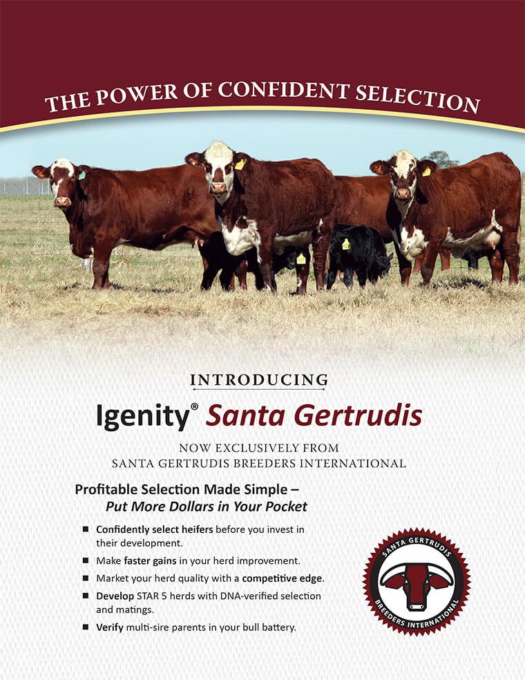 Igenity Promo Cover
