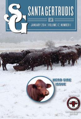 January 2014 | Vol 17, No 1
