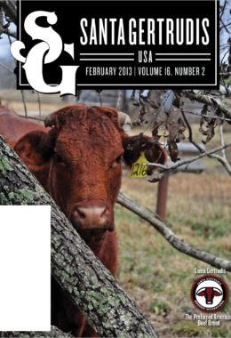 February 2013 | Vol 16, No 2