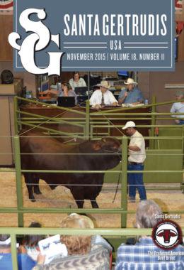 November 2015 | Vol 18, No 11