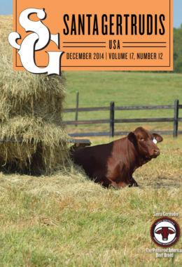 December 2014 | Vol 17, No 12