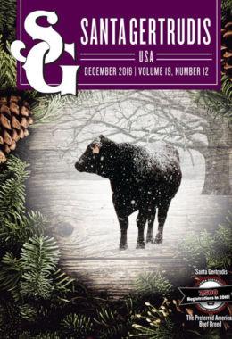 December 2016 | Vol 19, No 12
